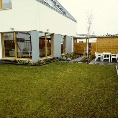 ogród z trawami
