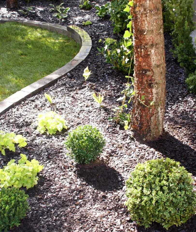 Ogród w cieniu